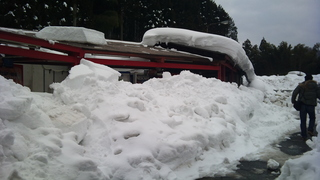2011-01-21 15.47.12.jpg