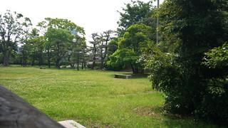 2011-06-04 09.49.11.jpg